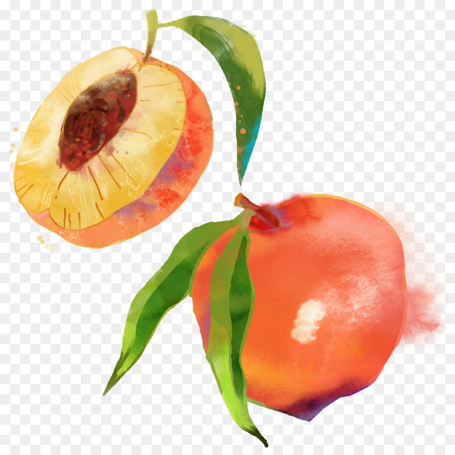 900x900 Saturn Peach Fruit Watercolor Painting