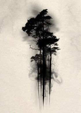 280x392 Forest Wood Woods Mist Fog Watercolor Tree Trees Floating Mystical