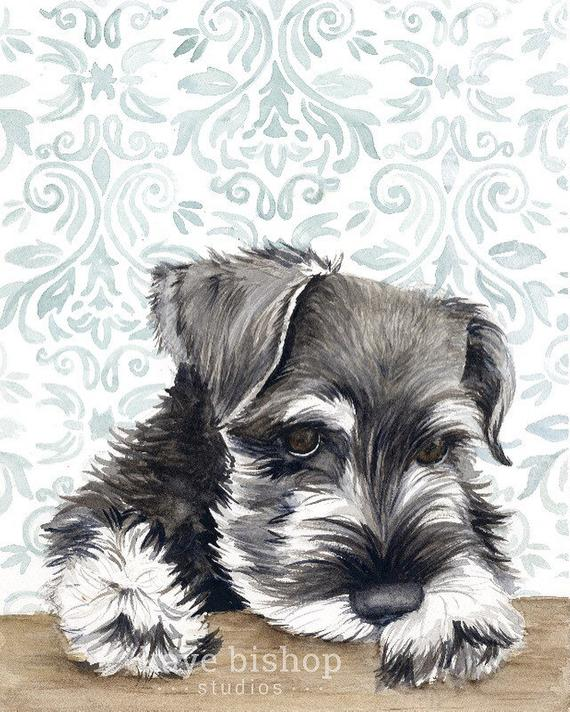 570x712 Mini Schnauzer Watercolor Painting Animal Art Schnauzer Etsy