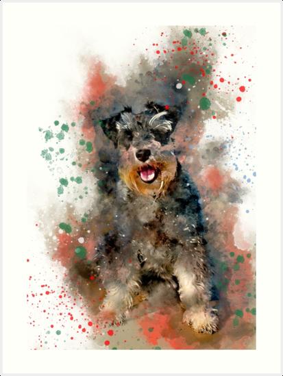 413x549 Miniature Schnauzer, Watercolor Miniature Schnauzer Art Prints By