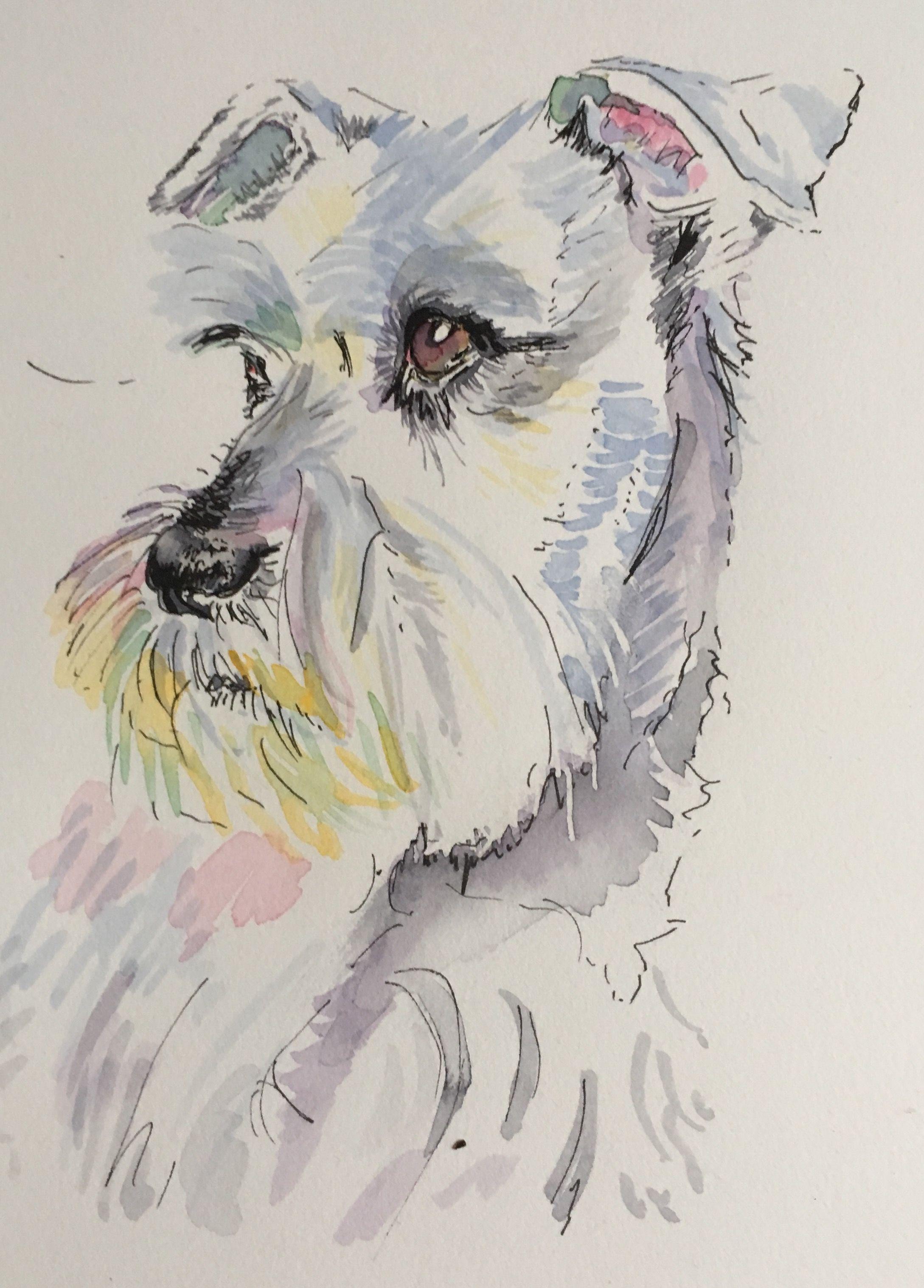 2177x3033 Schnauzer. Watercolour By Lynda Bellmann Dogs