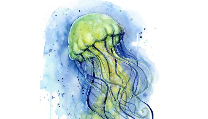 700x402 Jellyfish Watercolor Beautiful Sea Creatures Pillow Sham By