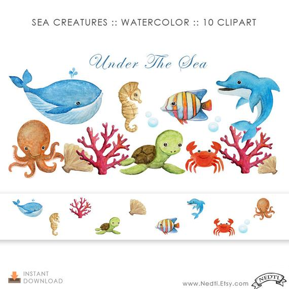 570x570 Watercolor. Sea Creatures Digital Clipart. Painting Download. Etsy