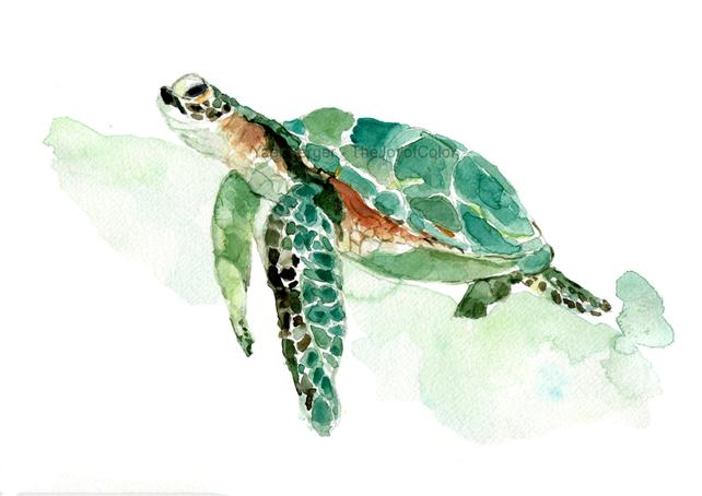642x454 Sea Turtle Watercolor Print Sea Turtle Painting Sea Life Etsy