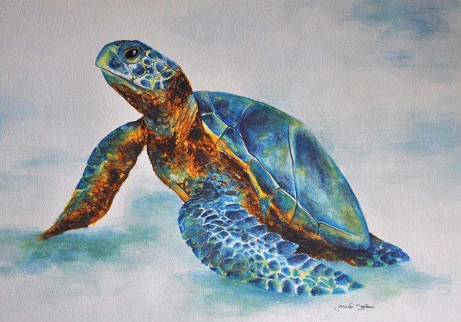 900x629 Sea Turtle Paintings Canvas Best Of Sea Turtle Painting By