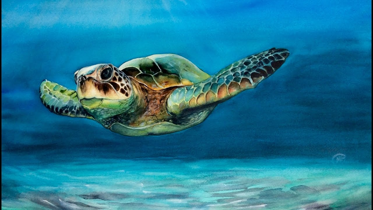 1280x720 Watercolor Sea Turtle Painting Demonstration