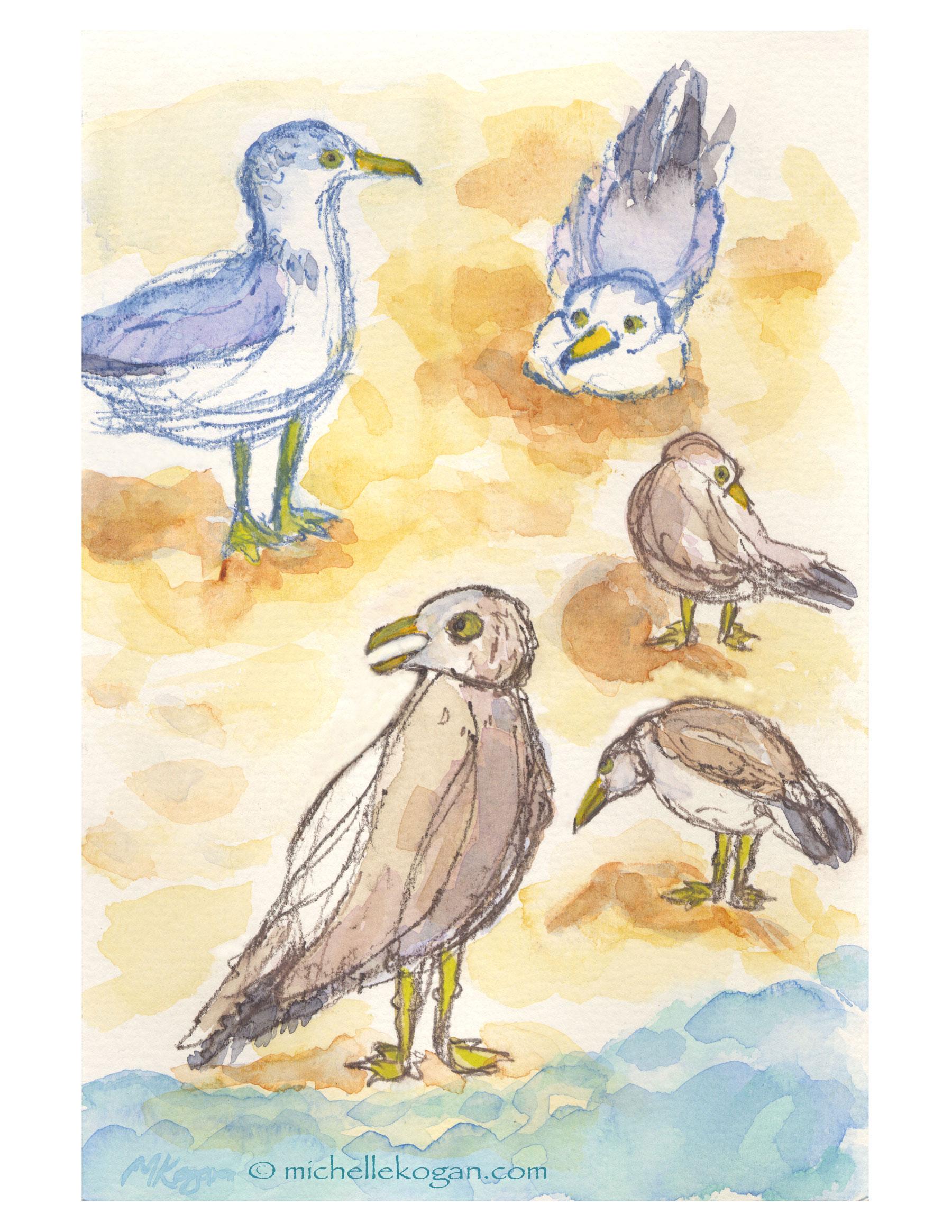 1800x2329 Summer Seagull Watercolor Sketches Michelle Kogan Chicago