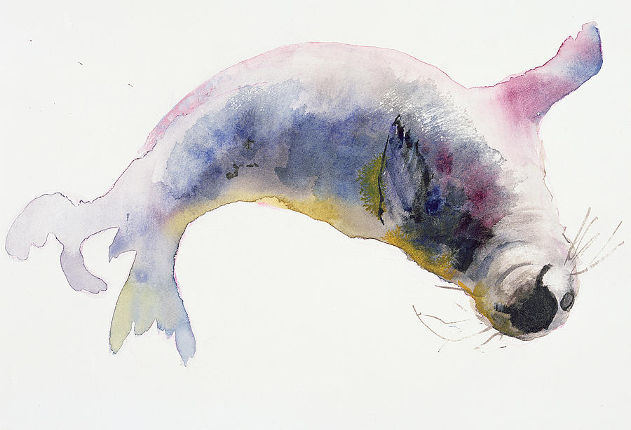 900x614 Young Grey Seal Painting By Mark Adlington