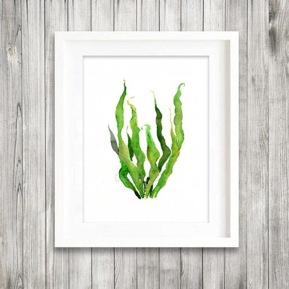 570x570 Green Sea Kelp Seaweed Watercolor Painting Print Green Leaves Etsy