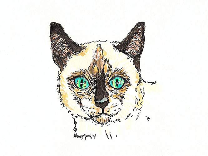 Siamese Cat Watercolor