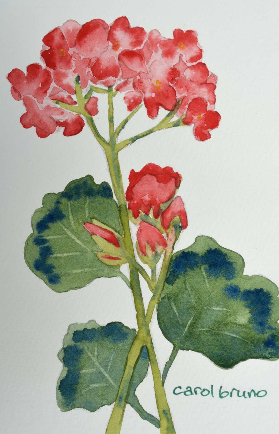 965x1500 Easy Watercolor Painting Awesome Easy Watercolor Paintings Flowers
