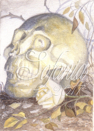 374x523 Aceo Original Watercolorautumn Skull Gothic, Macabre, Skeleton