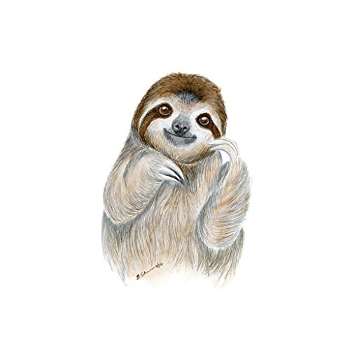 The Best Free Sloth Watercolor Images Download From 43