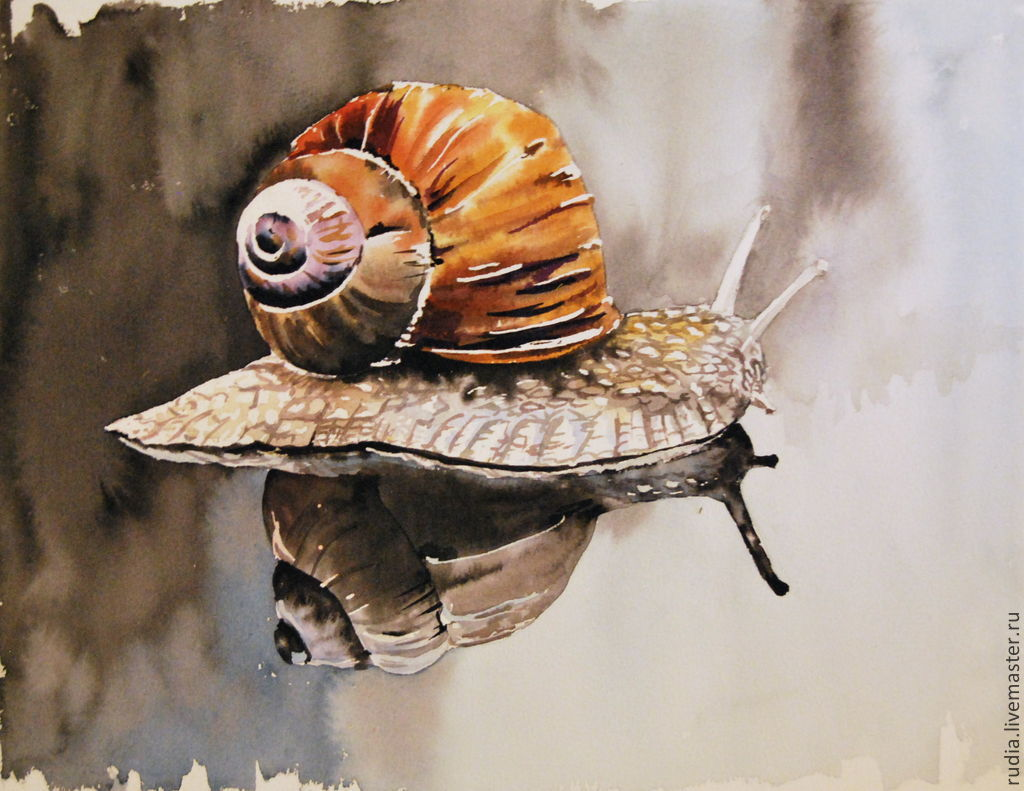 1024x791 Watercolor The Snail And Its Reflection. Watercolor Painting