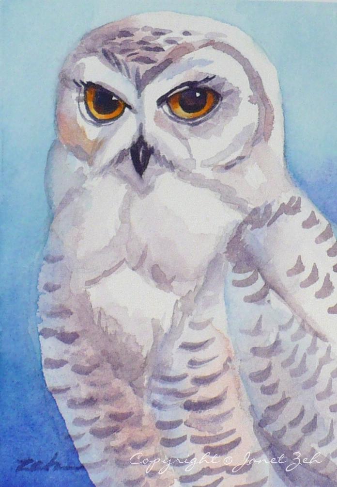 696x1004 Janet Zeh Original Art Watercolor And Oil Paintings Snowy Owl