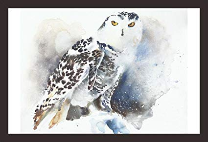425x291 Mad Masters Snowy Owl Watercolor Painting 1 Piece Wooden Framed