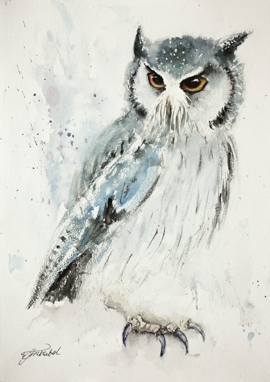 884x1250 Owl (Original)
