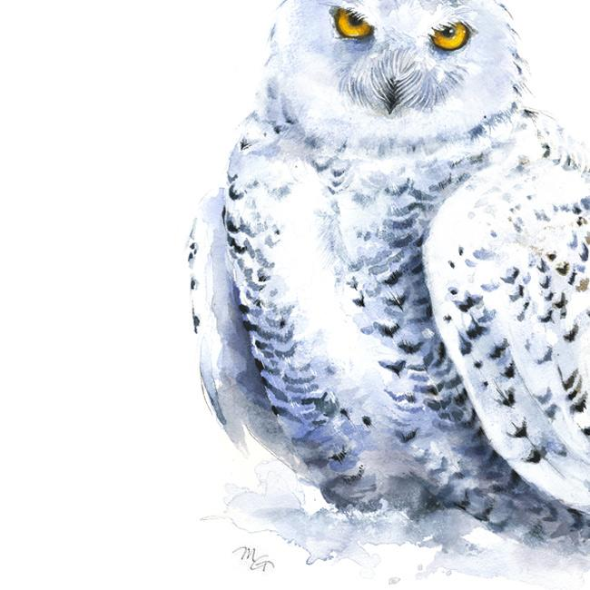 650x650 Snowy Owl Watercolor Archival Print Mira Guerquin Watercolors