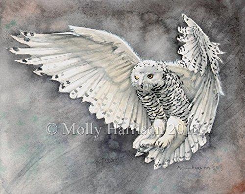 500x396 Snowy Owl Fine Art Giclee Print Watercolor Handmade