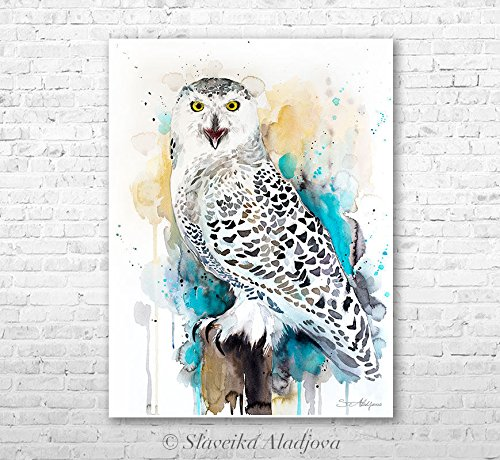 500x460 Snowy Owl Watercolor Painting Print By Slaveika
