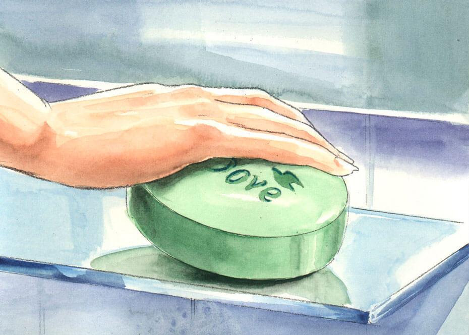 930x664 Envisionaire Dove Soap