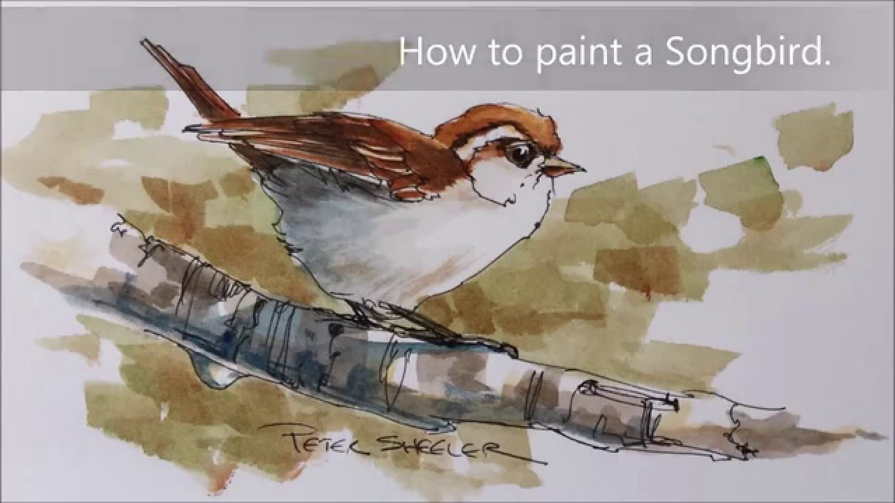 1280x720 How To Paint A Bird, Sparrow Demonstration. A Fun Line And Wash