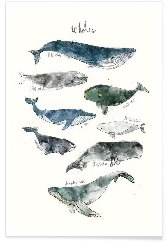554x800 Sperm Whale Cartoon Six Whales Stacked Archival Print Watercolor