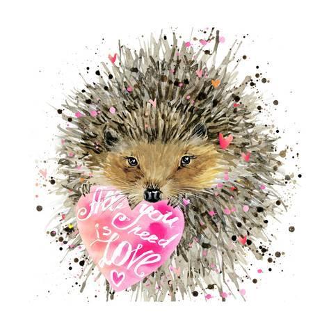 473x473 Watercolor Hedgehog. Hedgehog Illustration With Valentines Heart