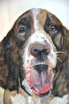 Springer Spaniel Watercolor
