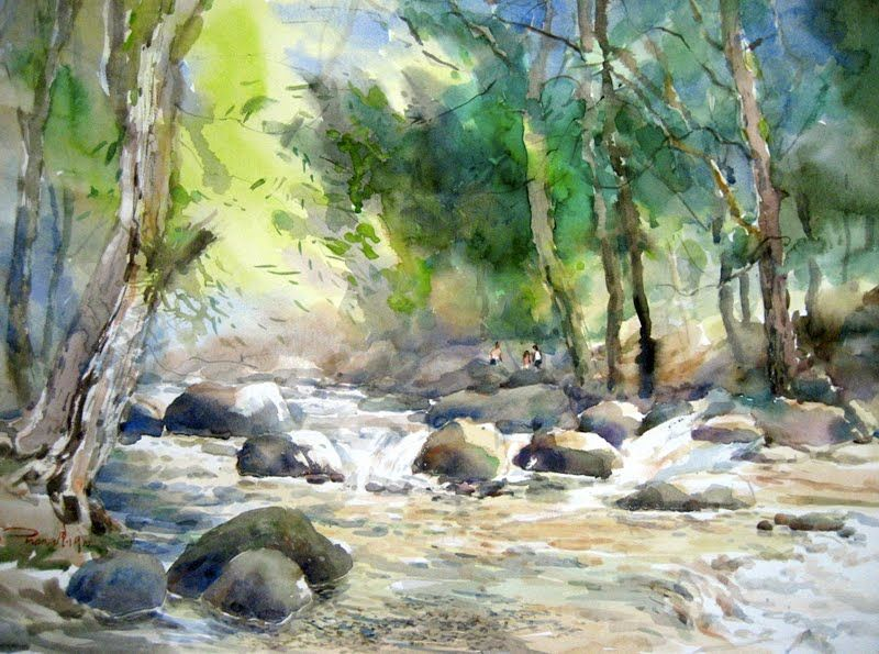800x595 Stream In The Woods
