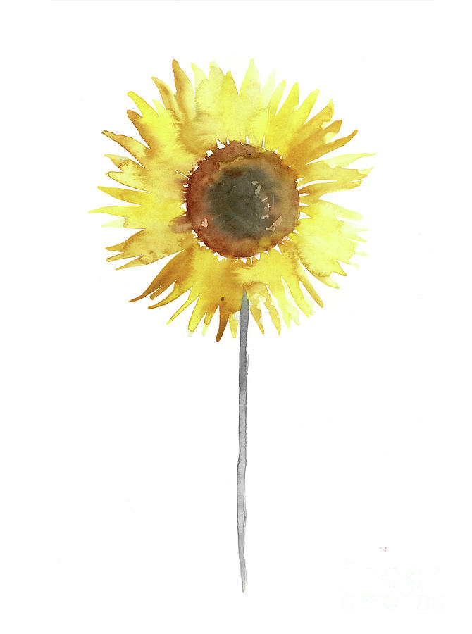 670x900 Sunflower Floral Display Yellow Brown Gray Watercolor Painting