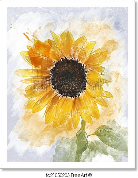 The best free Sunflower watercolor images  Download from 152