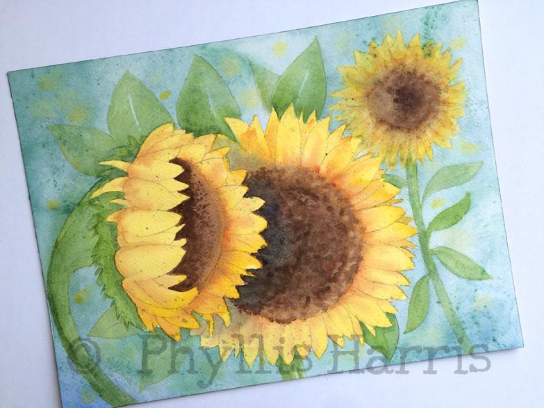 783x588 Original Sunflower Watercolor Painting By Phyllis Harris Phyllis