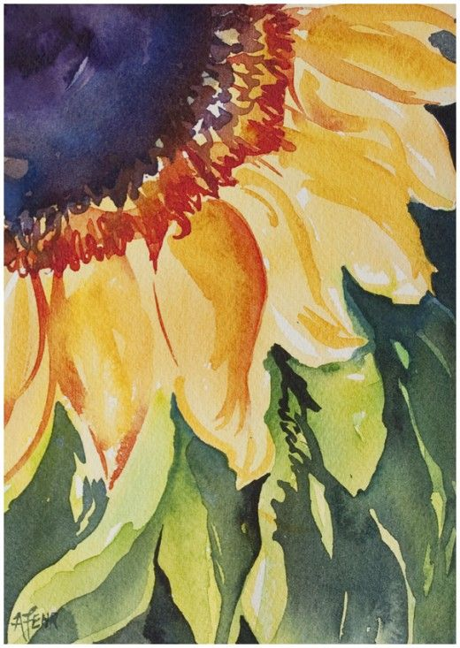 520x733 Sunflower In Watercolour Inspired By This Online Painting Course