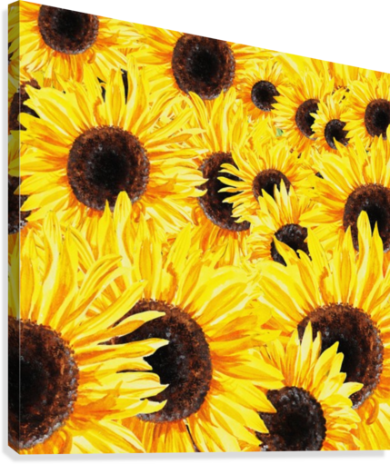 429x511 Sunflowers Field Watercolor Painting By Irina Sztukowski