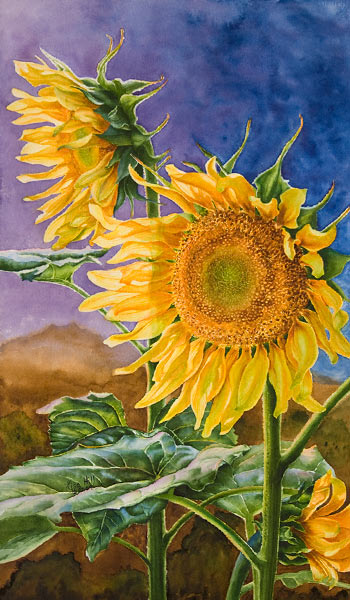 350x600 Watercolor Painting Demonstration Of Sunflowers By Richland, Wa