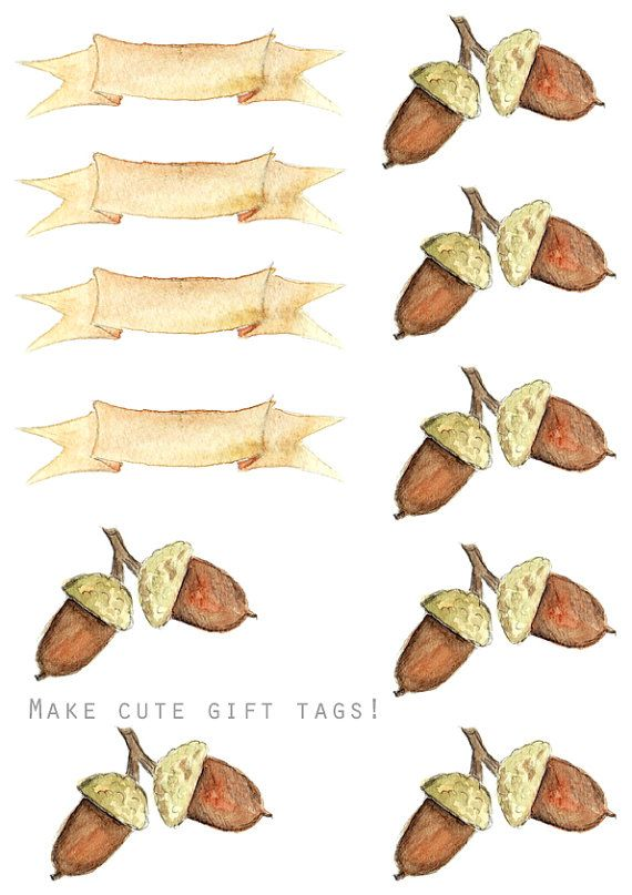 570x807 Thanksgiving Watercolor Clipart Diy Menu Cards Gift Tags Recipe