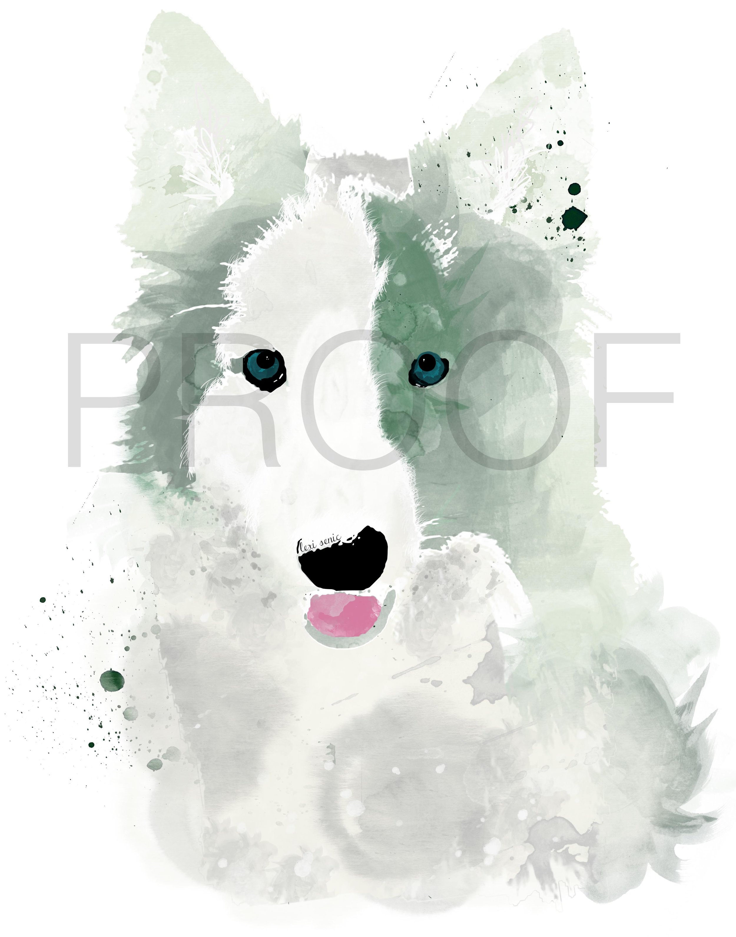 2500x3182 Border Collie Watercolor Dog Portrait Thor Free In The Lines