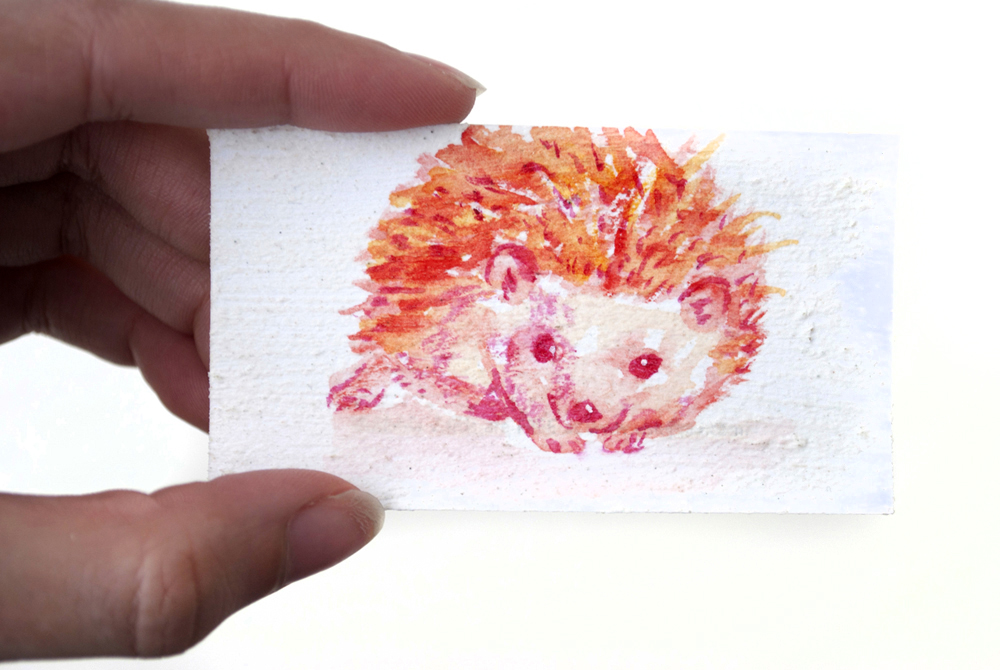 1000x670 Tiny Watercolor Hedgehog Painting By Brandimillerart