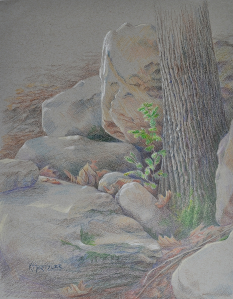 469x600 Forest K Hertzler Art