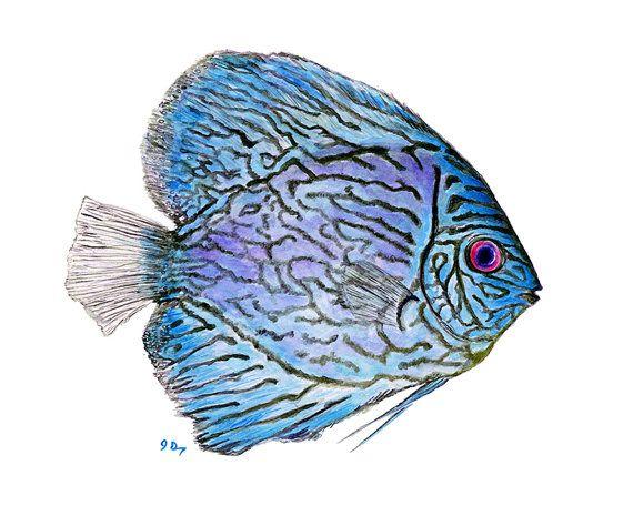 570x456 Blue Tropical Fish Art Tropical Fish Painting Blue Fish Print