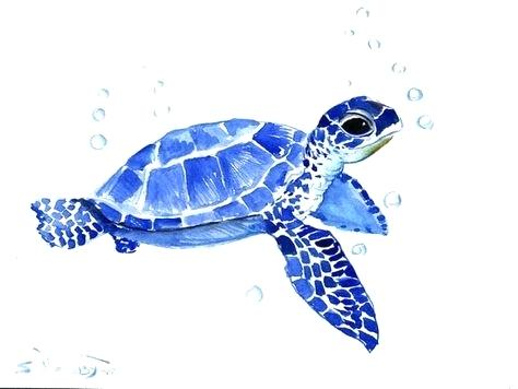 474x356 Sea Turtle Watercolor Painting More Watercolor Turtles Sea Turtle