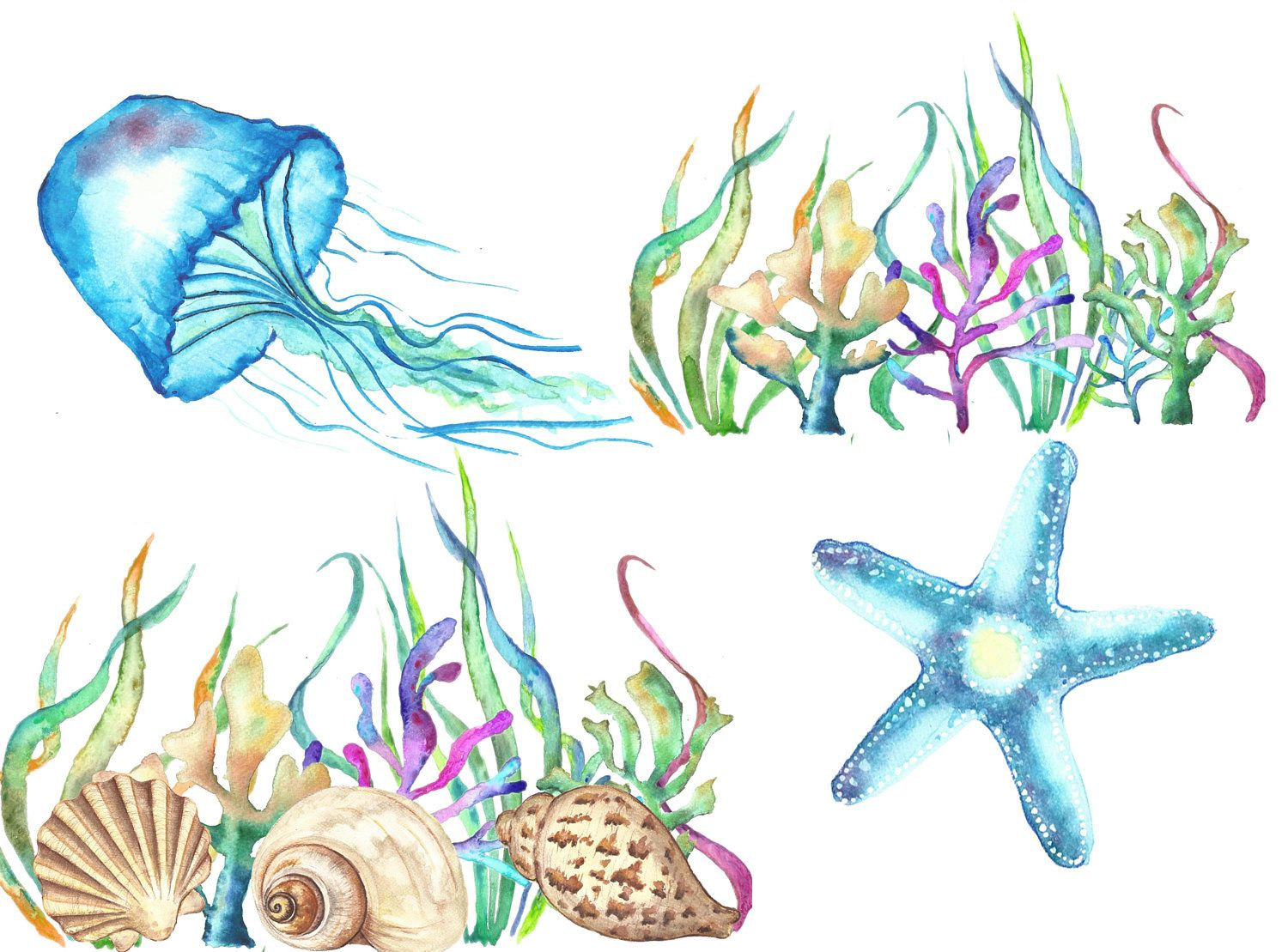 1500x1109 Sea Shells Watercolor Clipart, Under The Sea Clip Art Watercolor