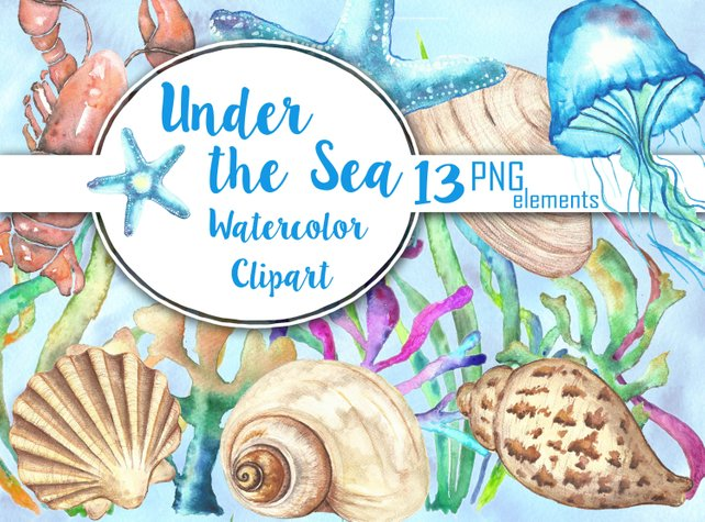 642x475 Sea Shells Watercolor Clipart Under The Sea Clip Art Etsy