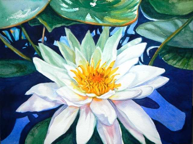 640x479 Painting Water In Watercolour Best Of Paint A Water Lily In