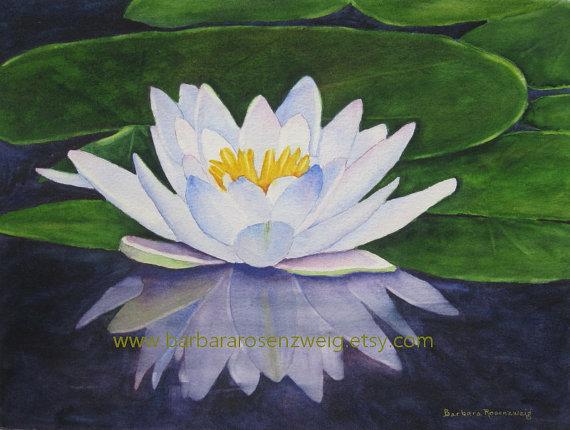 570x430 Water Lily Print, Flower Wall Art, Lily Wall Art, Flower