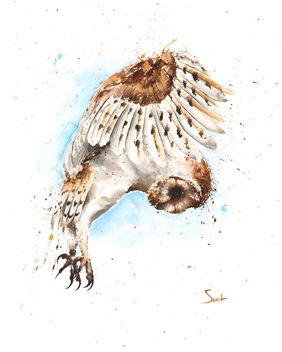550x686 Barn Owl Watercolor Print Abstract Animal Paintings By Eric