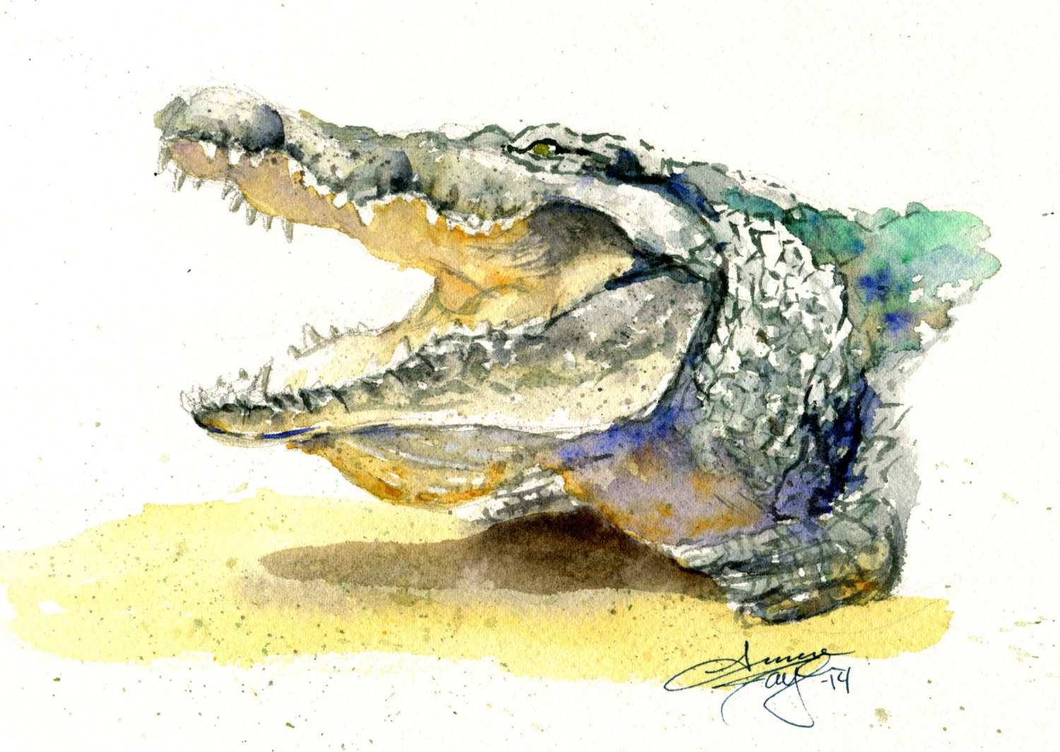 1500x1065 Alligator Painting Best Of Watercolor Crocodile Painting Ideas