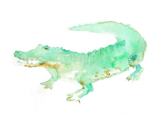 642x514 Alligator Print Watercolor Alligator Art 8 X 10 Print Etsy