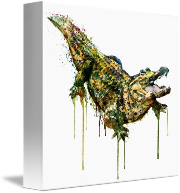 606x650 Alligator Watercolor Painting By Marian Voicu